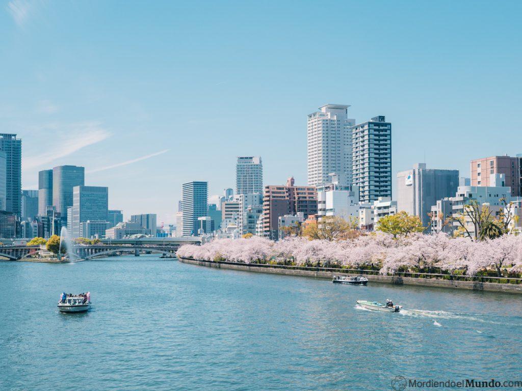 Cerezos en flor en Osaka