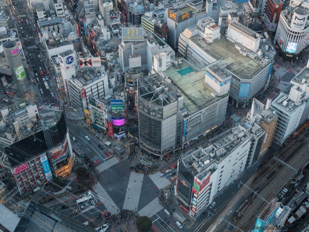 El cruce de Shibuya visto desde las alturas del Shibuya Sky en el Shibuya Scramble