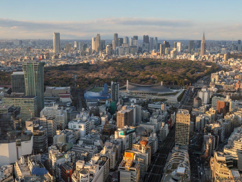 Vistas de Shinjuku y el parque Yoyogi desde las alturas
