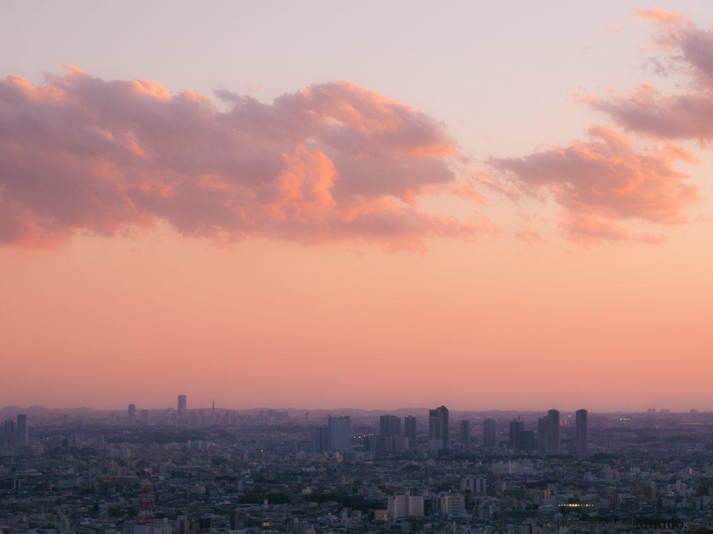 Panoramica de Tokio al atardecer con un cielo rosado