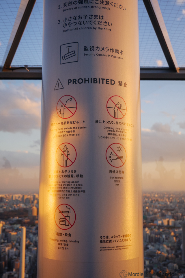 Prohibiciones en el mirador Shibuya Sky